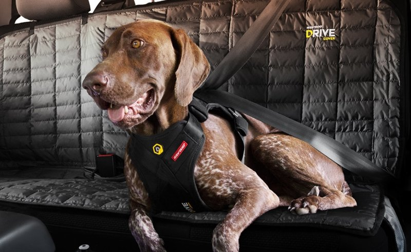 EzyDog Drive Safety Travel Dog Car Harness - Crash Tested US (FMVSS 213 Certified)